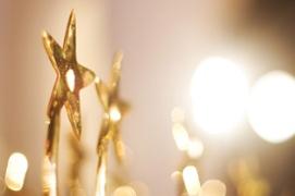 Chairman's Service Award
